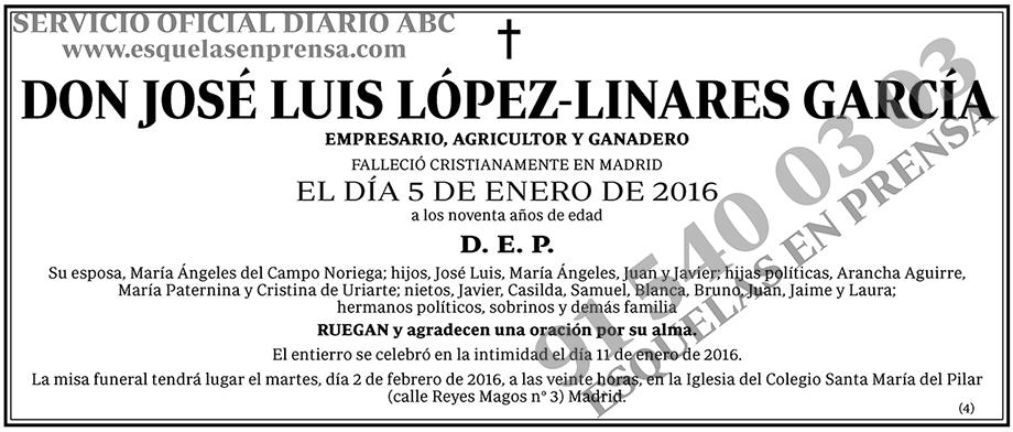 José Luis López-Linares García